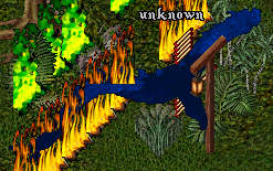 2004-5-5-unknown.png